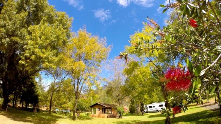 Villa Patzcuaro RV Park Texas